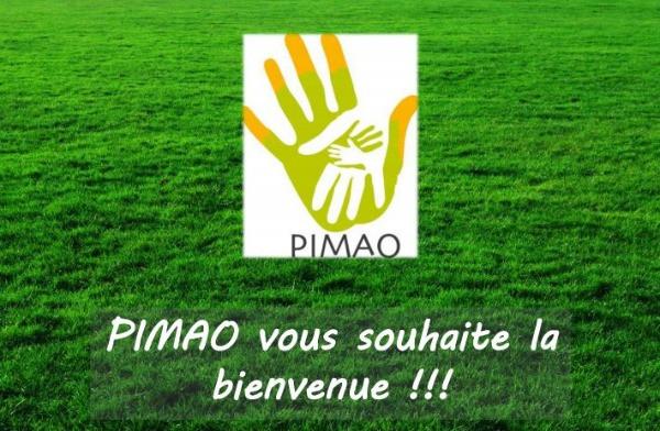 Cliquez sur l'image pour lire et télécharger les éléments de l'AG PIMAO 2019