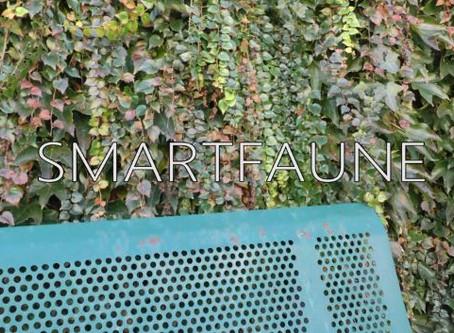 Gers (32) SmartFAUNE - Court métrage
