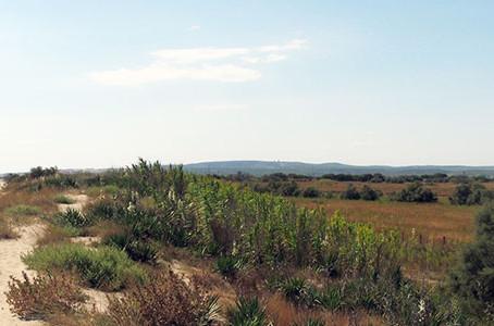 Aude (11) Agriculture - Circuit Court