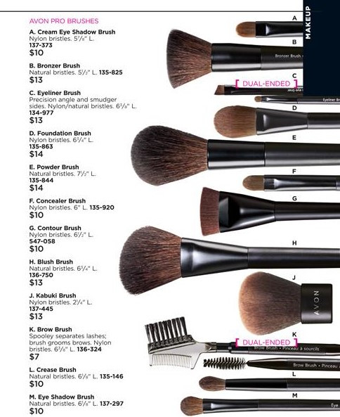 what makeup brushes do you need - makeup brush beauty chart