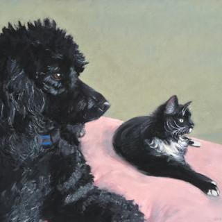 Jasper and Ziki
