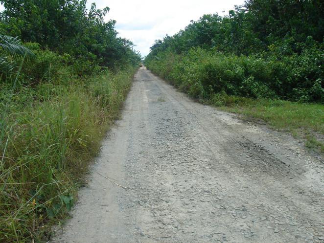 taylor-creek-rd1-662x497.jpg