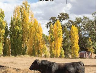 26th Annual Bull Sale