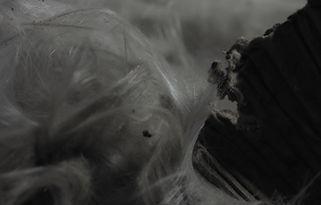 Nicola Piccini - Opus Magnus - Video trilogy - Cover Image