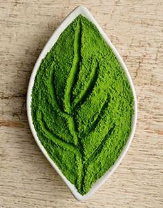 matcha leaf green powdered tea