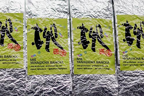 Yanagi Bancha Mie (100 gr)