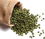 green-coffee-beans-500x500.png