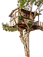Treehouse HDR.png