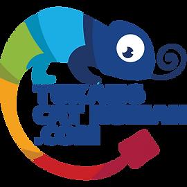Tukang-Cat-Rumah-Web.png