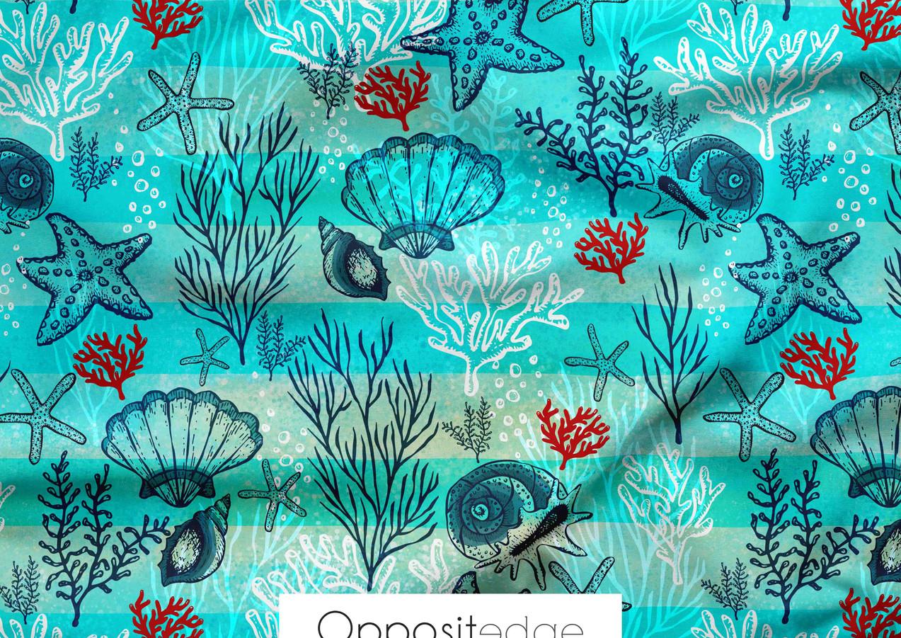 Seashells & Starfish 001.jpg