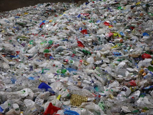 Politicians target end to plastic waste exports