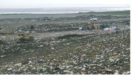 SESA raises concern over Scottish landfill ban