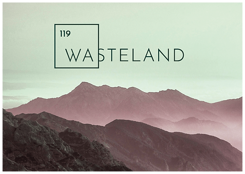 Logo & Visual Wasteland