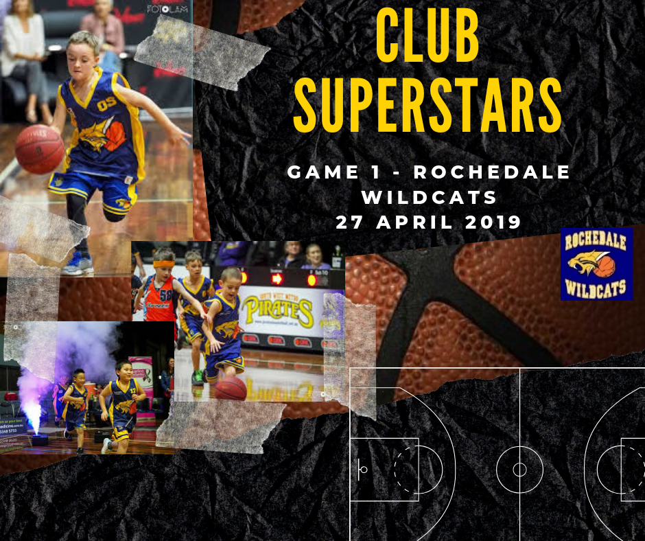 Rochedale Wildcats