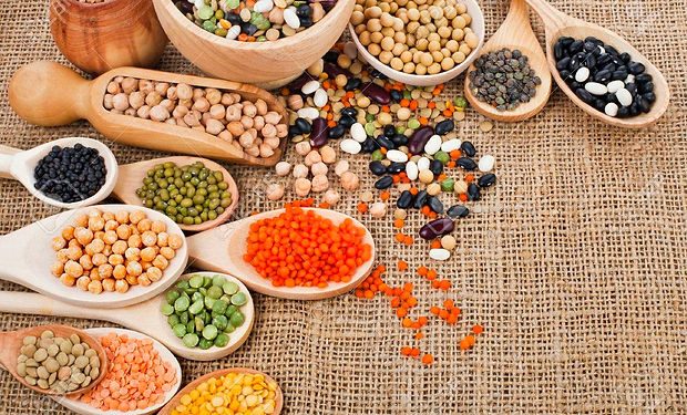 23546647-different-beans-legumes-peas-le