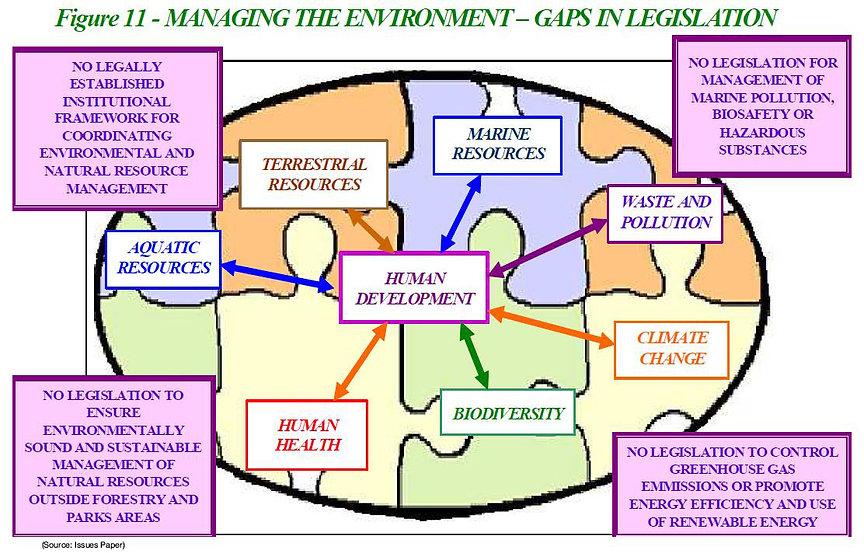 manage environment.jpg