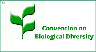 convention on Bio;ogical.jpg