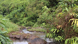 PROJECT: SAMOA CLIMATE RESILIENCE INVESTMENT PROGRAMME (CRIP) - SITUATION ANALYSIS