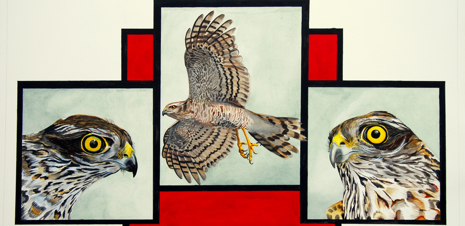 Triptique of Falcons