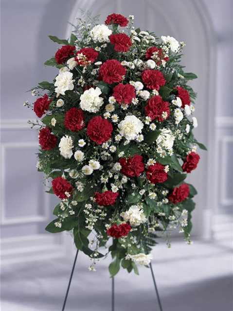 Red & White Carnation Standing Spray