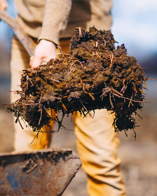 soil-health.png
