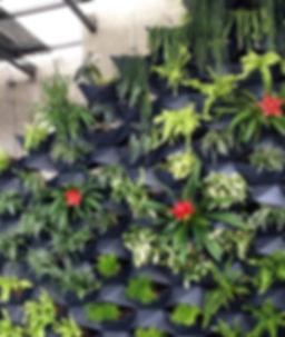 Prai Vertical Garden