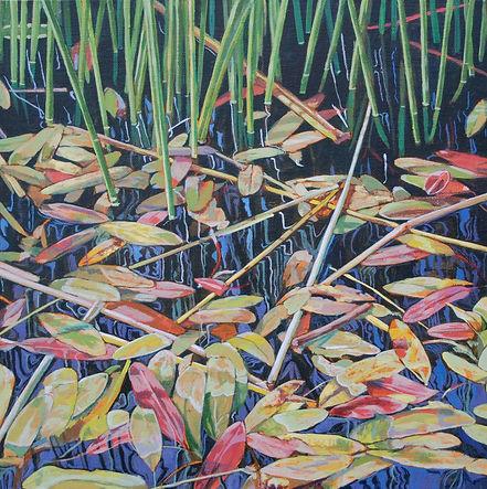 Leaves on Water.jpg