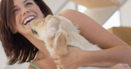 RE-Launch of 'YOUR DOGS HEALTH' 2ND EDITION - REPRINT