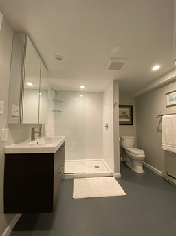 Upperville basement bath