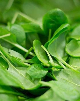 spinach-2216967_640.jpg