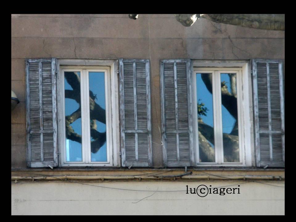 Aix-en-Provence - Tigli.jpg