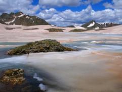 Colorado Tundra in July