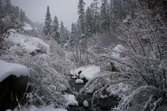 Jemez River Winter