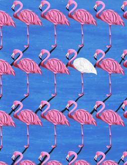 final flamingo.jpg