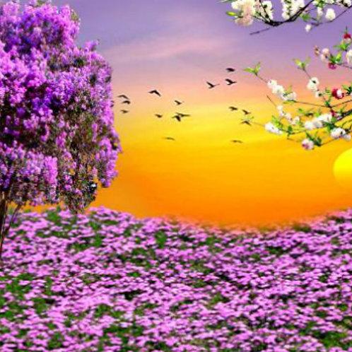 Scene purple