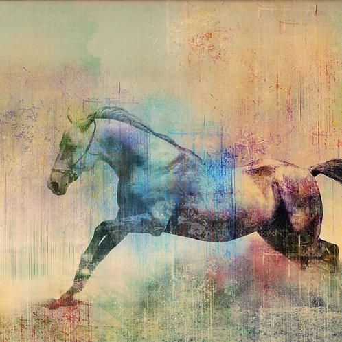 Horses paintin