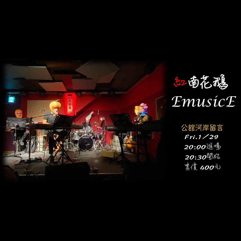 紅南花鵝 EmusicE