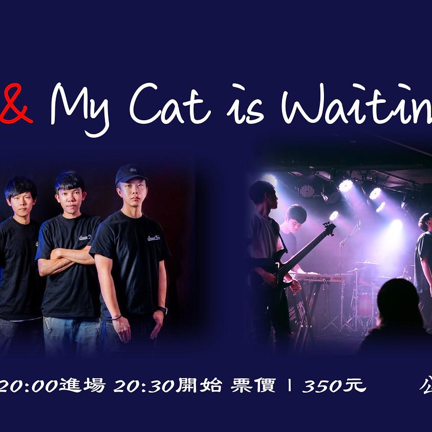 二手菸 & My Cat is Waiting