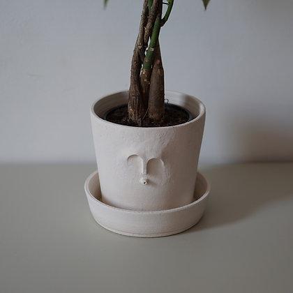 Pot + coupelle TOTOTEM