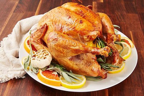 Turkey - 15 lbs