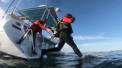 Boat Based diving Neptunes divers