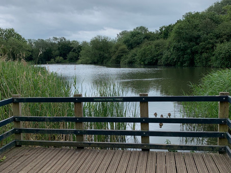 Loughton Lodge Lake
