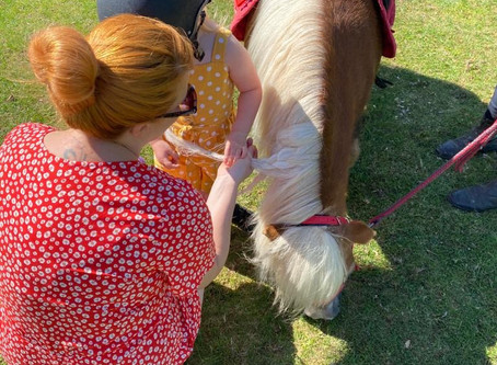 The Little Shetland Company Pony Ride and Groom
