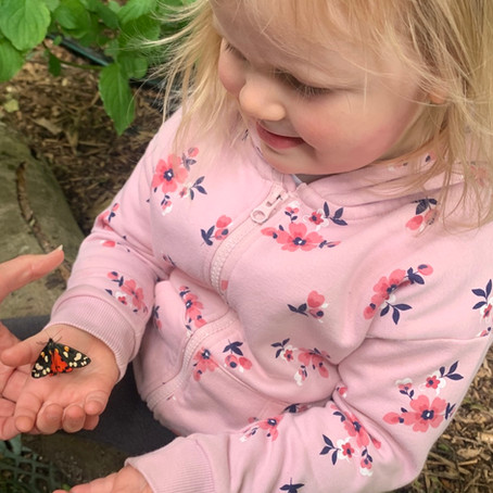 Bradwell Abbey Sensory Garden