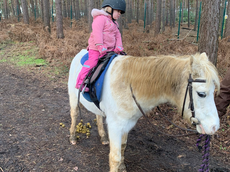 Brook Stables Toddler Pony Ride