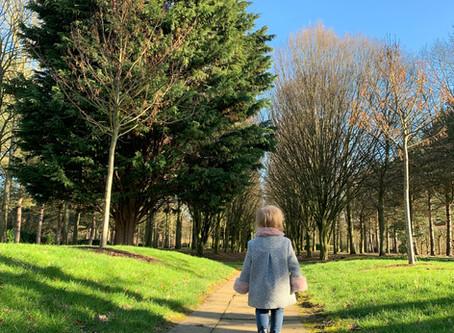 Milton Keynes Tree Cathedral