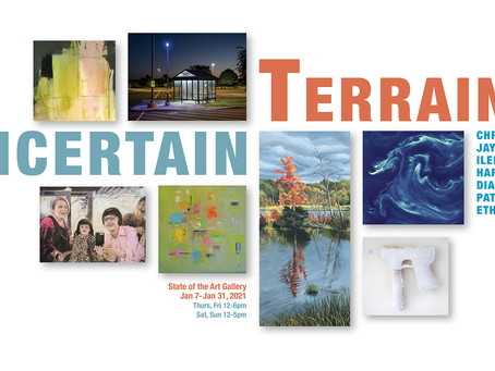 Uncertain Terrain at State of the Art Gallery