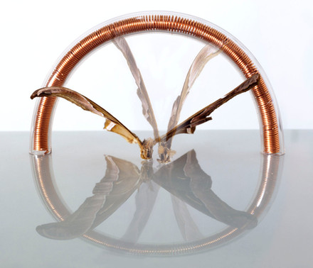 Alternative Alternative Energy