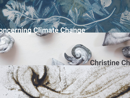 Concerning Climate opens at State of the Art in Ithaca
