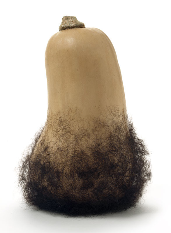Bearded Butternut